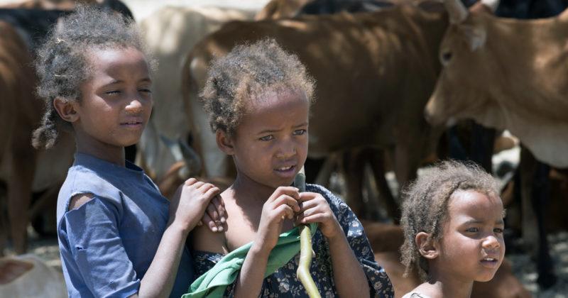 Students of Dembel Dildila kebele Goro wereda area BSS Mulugeta Ayene